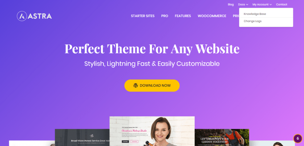 WP Astra - Free and fast WordPress theme